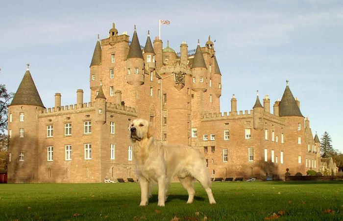 Dumble vor Glamis Castle